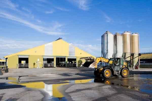 Modern metal milking barn