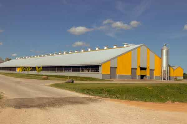 Steel Dairy Barns Amp Modern Farm Storage Buildings