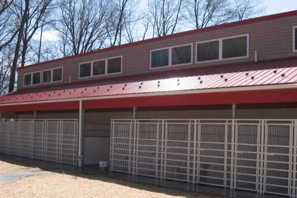 Steel Commercial Dog Kennel Building