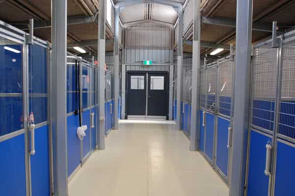 Kennel Interior