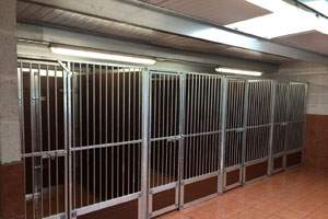 kennel interior cages