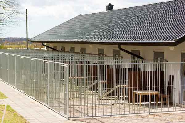 Commercial Kennel Building