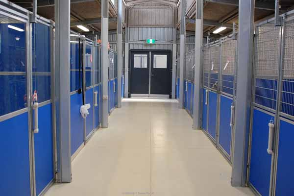 Commercial Kennel Interior